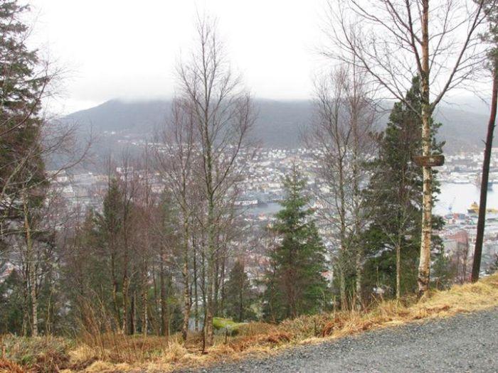 Norway6